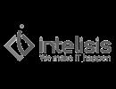 INTELISIS GRIS 200150
